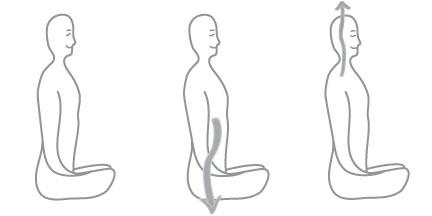straighten-spine